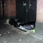 Obdachlose in Frankurt am Main   Foto: DerGloeckel.eu